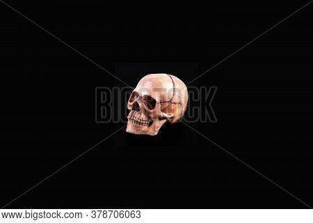Orthogonal Human Skull View Of Medical Lab Skull Isolated On Black, Realistic Skull Bone,good For Me
