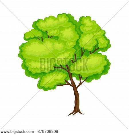 Tree With Trunk As Raw Material For Wooden Furniture Production Vector Illustration