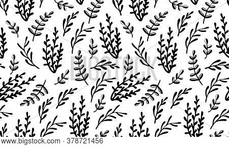 Vector Seamless Pattern Of Potherb. Hand Drawn Doodle Illustration Of Healthy Farm Food. Organic Veg