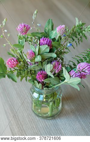 Bouquet Of Clover Flowers In A Vase. Rustic Still Life With Clover Wildflowers. Natural Still Life.