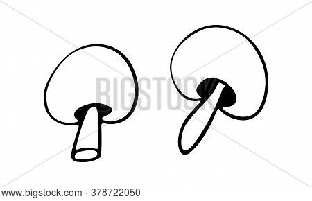 Vector Doodle Illustration Of Champignon Mushrooms. Hand Drawn Healthy Farm Vegetable Isolated On Wh