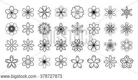 Set Of Floral Elements. Vector Flowers Black Outline Collection, Line Art Flowers For Your Design, I