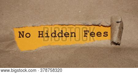The Message No Hidden Fees Appearing Behind Torn Brown Paper. Business Concept