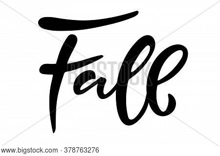 Fall. Hand Written Lettering On White Background. Vector Calligraphy Illustration. Fall, Autumn And