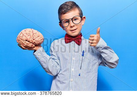 Cute blond kid wearing nerd bow tie and glasses holding brain smiling happy and positive, thumb up doing excellent and approval sign