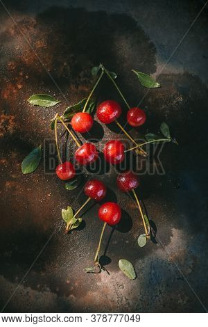 Ripe Cherries With Dew Drops On A Dark Background In The Rays Of Morning Light. Cottagecore Aestheti