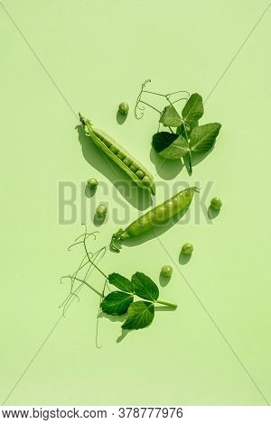Trendy Sunlight Pattern Made From Pods Of Green Peas On A Green Background. Minimalistic Composition