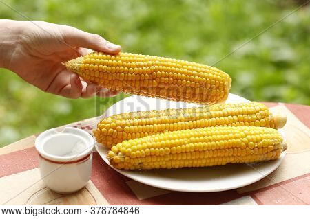 Boiled Ripe Corn Cob With Salt Close Up Photo On Plate With Human Hand Grab One