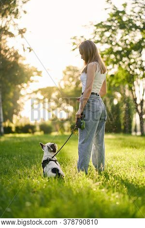 Side View Of Young Woman Standing With French Bulldog In City Park. Purebred Pet Sitting On Grass, L