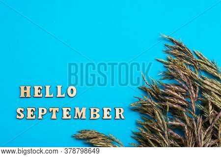 Hello September. Text In Wooden Letters And Ears Of Grass On A Blue Background