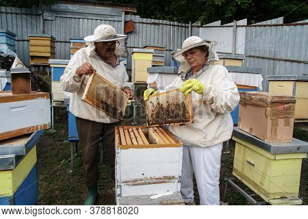 Beekeeper Taking A Honeycomb With Bees Off The Beehive. Beekeeper Working On A Beehive In Nature