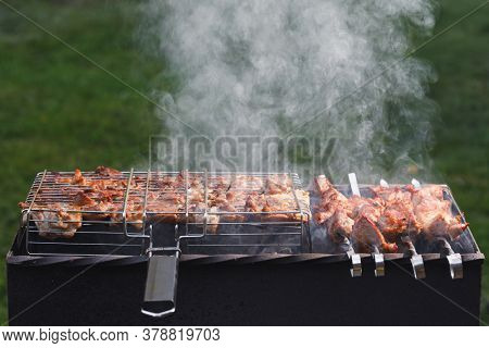 grill barbecue meat on a brazier with natural smoke, green grass background