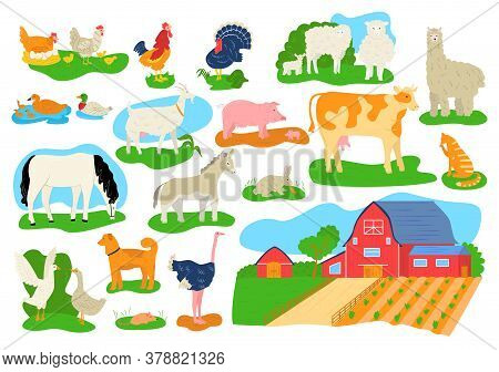 Farm Domestic Animals Icons Set Isolated Vector Illustrations. Cow, Horse, Pig, Goat And Sheep, Chic