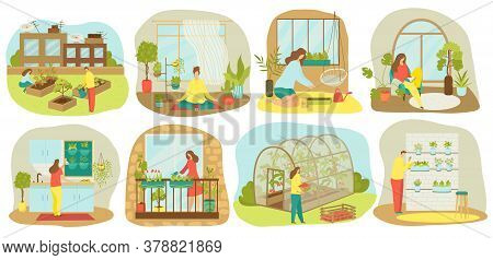 Urban Gardening, Plants And Vegetables Or Agriculture Set Of Vector Illustrations. Planting Garden O