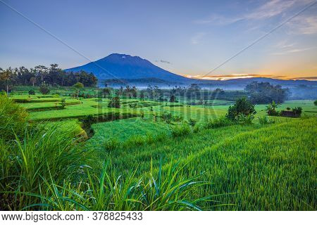 Beautiful Landscape During Sunrise. Rice Paddies With Agung Volcano On The Background. Scenic Panora
