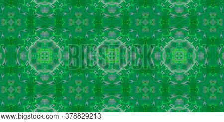 Background Hand Drawn Geometrical Pattern. Graphic Floral Geometric Ornament. Hand Drawn Geometrical
