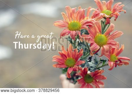 Thursday Card And Greeting Concept With A Bouquet Of Dahlia Peach Color Flowers Background. Have A G