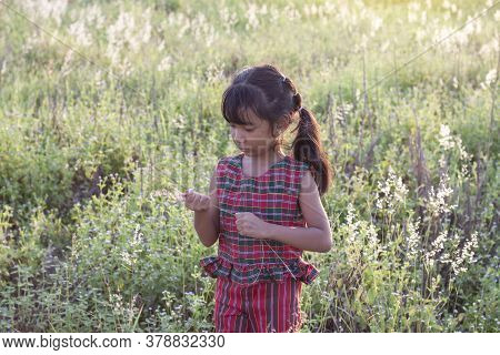 Asian Little Girl Wore A Dress Made Of Thai Loincloth Or Kamar Band Or Commer Band Standing To Hold