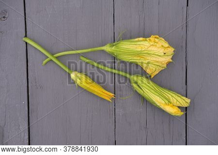 Yellow Squash Flowers On Grey Rustic Table. Edible Flowers Concept. Squash Flower Buds As Haute Cuis