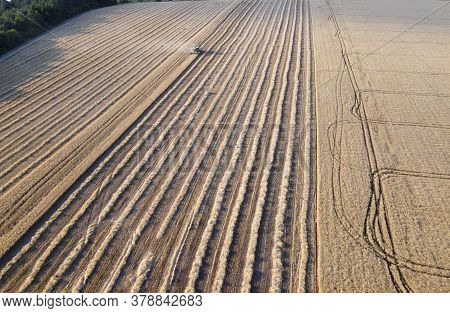 Agricultural Machinery Works In The Field, Harvesting, Harvesting Grain On The Farm, A Background Of