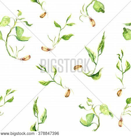 Green Sprouts With Leaves, Seeds With Sprig. Seamless Natural Pattern. Spring Watercolor