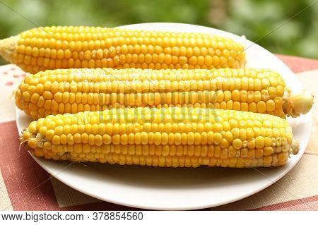Boiled Ripe Corn Cob With Salt Close Up Photo On Plate