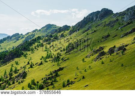 Green Mountain Scenery With Vivid Green Mountainside With Conifer Forest And Big Crags Under Clear B
