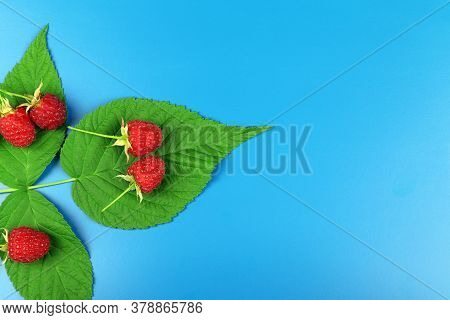 Red Ripe Raspberry With Green Leaves Isolated On A Blue Background. Healthy Organic Food. Harvest. C