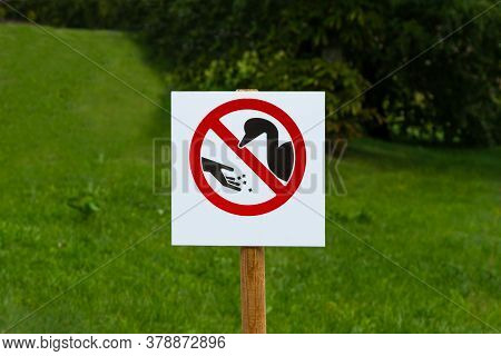 Sign Do Not Feed Birds. Do Not Feed The Animals
