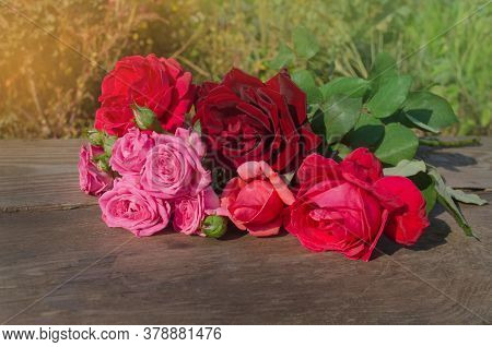 Floral Composition With Roses. Mix Color Roses