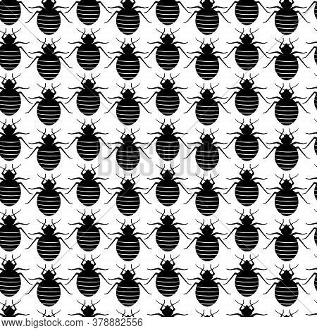 Seamless Pattern With Bedbugs In A Row. Vector Texture With Black Insects On A White Background. Bed