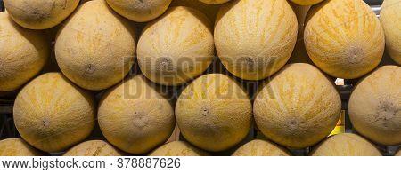 Ripe Melon Isolated. Cantaloupe Melon. Honeydew Melon.