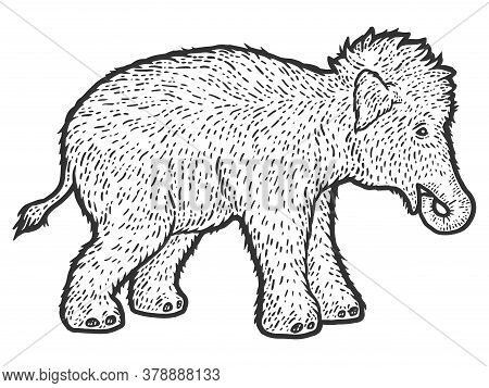 Woolly Mammoth Child. Sketch Scratch Board Imitation.