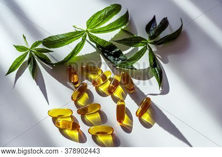 Medical Cannabis Products: Leaf, Capsules And Cbd Oil On White Background. Pharmaceutical Gelatin So