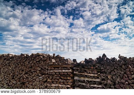 Stacked Logs, Firewood In Landscape With Sky And Clouds
