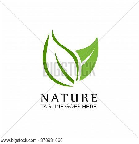 Nature Leaf Green Logo Icon, Abstract Green Leaf Logo Icon Vector Design. Landscape Design, Garden,