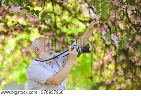 Senior Man Photographer Blooming Trees Background. Cameraman Retirement. Professional Photographer.