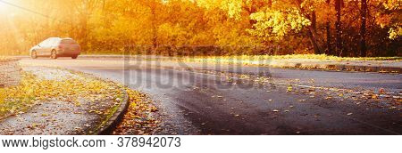 Autumnal Asphalt Road With Beautiful Trees And Foliage