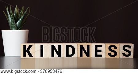 Kindness Word Made With Building Blocks, Concept