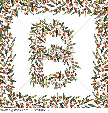 Letter B Of The English And Latin Floral Alphabet. Graphic In Square Frame On A White Background. Le