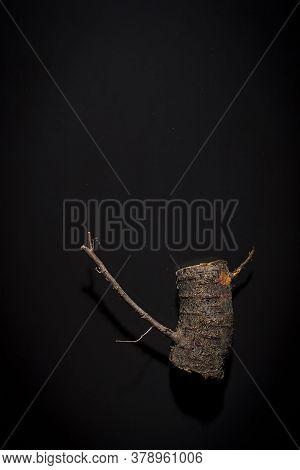 Wooden Log With Knots On A Black Background