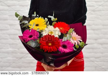 Girl With A Bouquet Of Colorful Gerberas. Girl With Bright Colors. Flower Gift Flower Shop