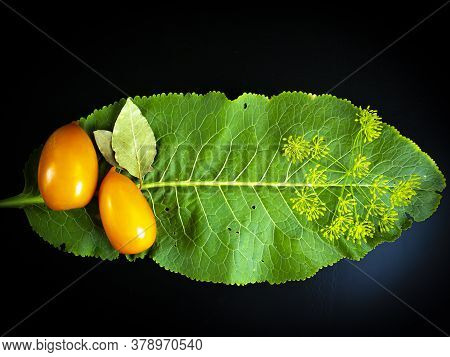 Yellow Tomatoes With Horseradish Leaf On A Black Background. Food Photo. Agriculture. Farm. Shop Win