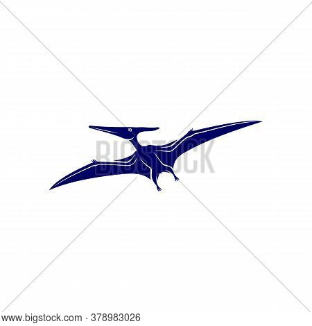 Pterosaurs Logo Design Vector. Icon Symbol. Template Illustration