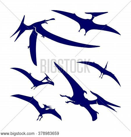 Set Of Pterosaurs Logo Design Vector. Icon Symbol. Template Illustration