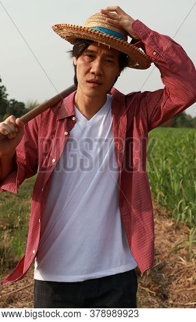 Man Farmer With Hoe In Hand Walking In The Sugarcane Farm And Wearing A Straw Hat With Red Long-slee