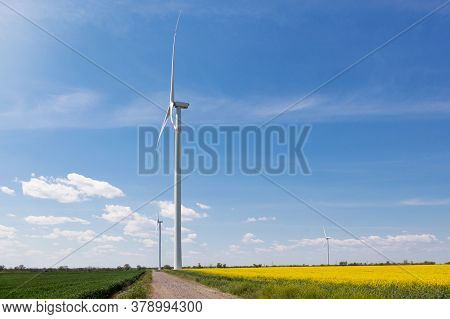 Several Turbine Generators Stand On Agricultural Land, A Dirt Road Separates The Yellow Canola Field