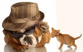 english bulldog dressed up in glasses and fedora ready to hit down cute kitten poster