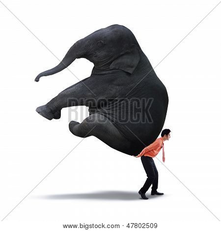 Businessman Lifting Heavy Elephant
