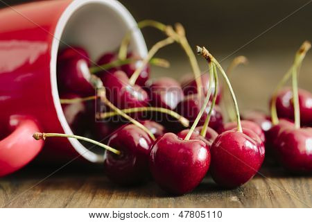 Cherry in closeup